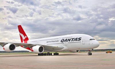 Австралийская авиакомпания Qantas объявила об сокращении тысяч рабочих мест - Фото