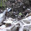 Стихийные свалки мусора под Витебском - фото