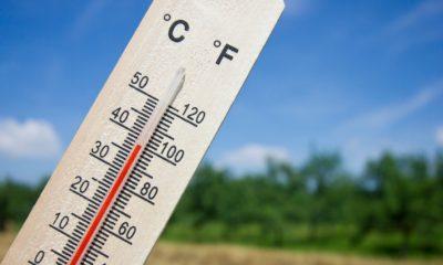 Новый температурный рекорд был зафиксирован в Сибири - Фото