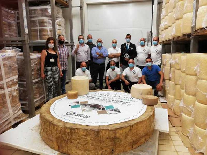 Колесо сыра весом более полутонны попало в Книгу рекордов Гиннеса - Фото