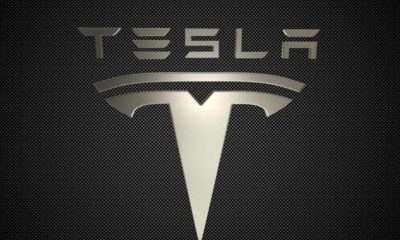 Tesla может начать строительство своего завода в Германии без экологического одобрения - Фото