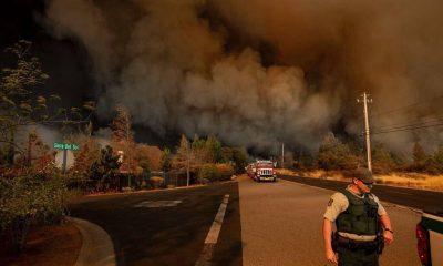 В результате лесных пожаров в Калифорнии погибли 5 человек - Фото