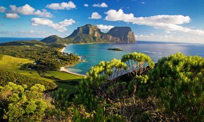 Новую Гвинею признали островом с самой разнообразной флорой в мире - Фото