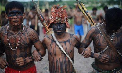 В Перу в ходе протестов против добычи нефти погибли три коренных жителя - Фото