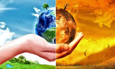 Немецкий исследователи климата выступает за освобождение многих регионов мира от людей - Фото