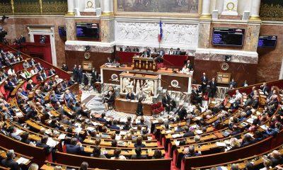 Парламент Франции принял спорный закон по биоэтике - Фото
