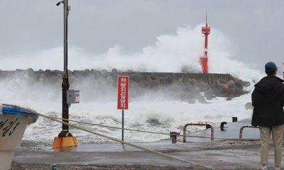 Один человек погиб из-за тайфуна «Майсак» в Южной Корее - Фото