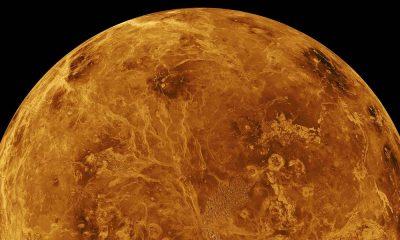 В атмосфере Венеры обнаружили газ фосфин - Фото