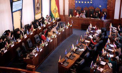 Парламент Боливии уволил министров внутренних дел и образования - Фото