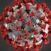 Число заразившихся коронавирусом в мире превысило 46 млн - Фото