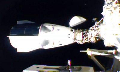 Корабль Crew Dragon с четырьмя астронавтами успешно пристыковался к МКС - Фото