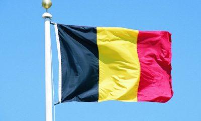 Бельгия отказалась признавать итоги выборов в Беларуси - Фото