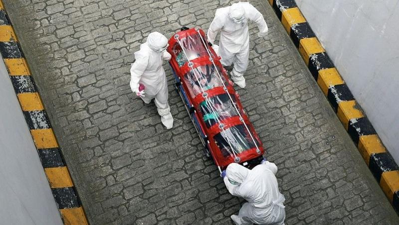 В Германии выявлен «бразильский» штамм коронавируса SARS-CoV-2 - Фото