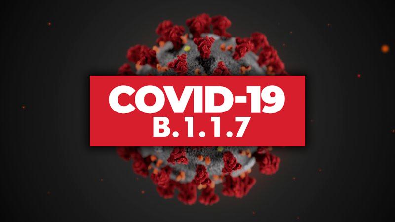 В Молдове обнаружен британский штамм коронавируса COVID-19 - Фото