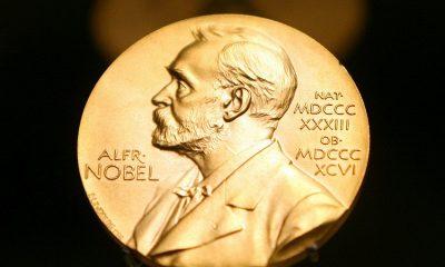 На Нобелевскую премию мира – 2021 номинировано более 300 кандидатов, в том числе Тихановская и Навальный - Фото