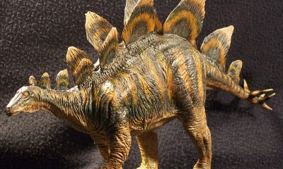 Ученые обнаружили следы стегозавра длиной 5,7 см в Китае - Фото