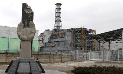 Ученые заявили, что генетические повреждения от Чернобыля не передаются от родителей к детям - Фото