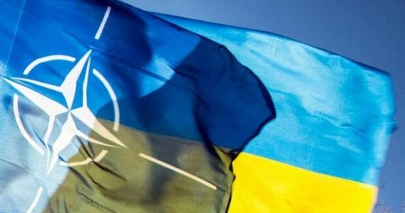 Зеленский назвал вступление Украины в НАТО путём к миру в Донбассе - Фото