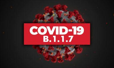 Ученые не нашли связи между британским штаммом коронавируса COVID-19 и высокой смертностью - Фото