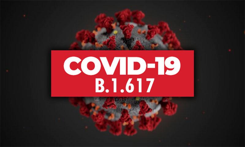 В Марокко и Алжире выявили первые случаи индийского штамма коронавируса COVID-19 - Фото