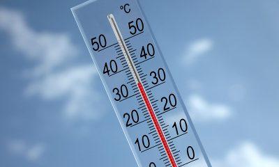 Выходные в Беларуси будут жаркими - Фото