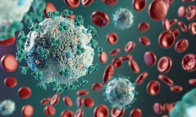 COVID-19 меняет клетки крови