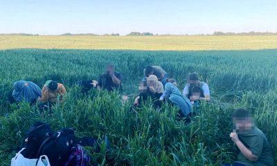 Президент Лукашенко о нелегальной миграции - фото