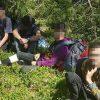 В Литве за сутки задержали самое большое число мигрантов из Беларуси - Фото