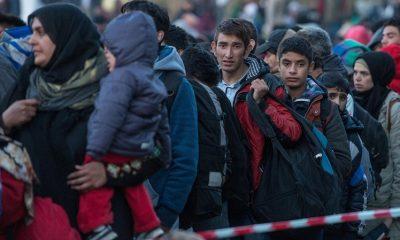 Германия лидирует среди стран ЕС почислу запросов напредоставление убежища - Фото