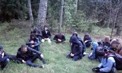 Эстония направила беспилотники в Литву для борьбы с нелегальной миграцией из Беларуси - Фото