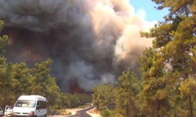 В Анталье один человек погиб при крупном лесном пожаре - Фото