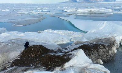 Ученые обнаружили самый северный остров в мире - Фото