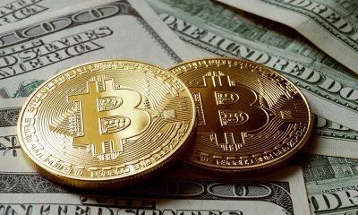 Цена биткоина поднялась выше $50 000 - Фото