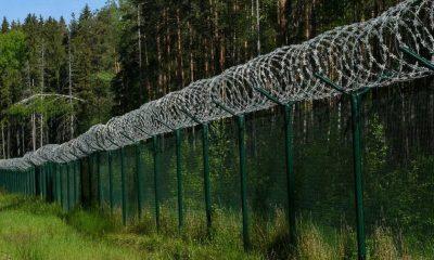 В Латвии на границе с Беларусью за сутки задержали 77 нелегалов - Фото