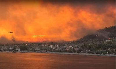 Не менее 150 домов были разрушены в результате сильного пожара на греческом острове Эвия - Фото