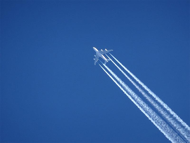 Самолет Austrian Airlines с Тимановской на борту не будет пролетать через Беларусь - Фото