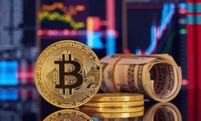 Цена биткоина поднялась выше $44 тысячи впервые с середины мая - Фото