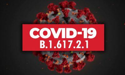 """В Южной Корее зарегистрировали первые два случая заражения COVID-19 """"дельта плюс"""" - Фото"""