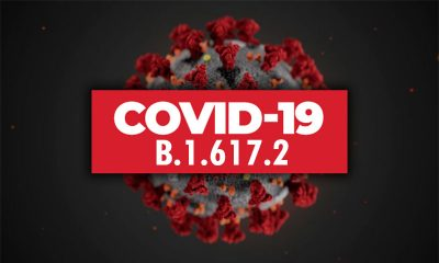 В Армении выявили первые случаи заражения дельта-штаммом коронавируса COVID-19 - Фото