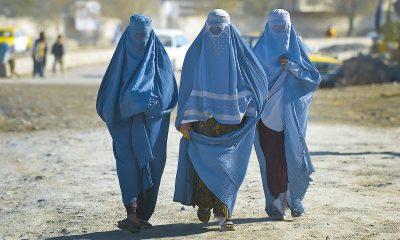 Талибы пообещали предоставить женщинам в хиджабе доступ к работе и образованию - Фото