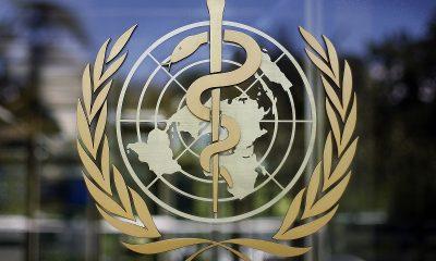В ВОЗ заявили, что мир вышел на плато по заболеваемости коронавирусом COVID-19 - Фото