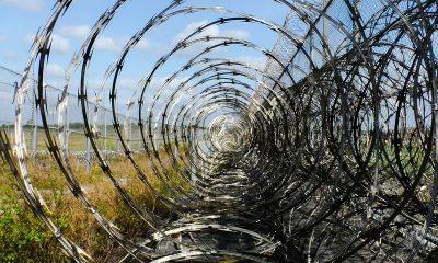 Латвия закупила колючей проволоки почти на €500 тыс. для забора на границе с Беларусью - Фото