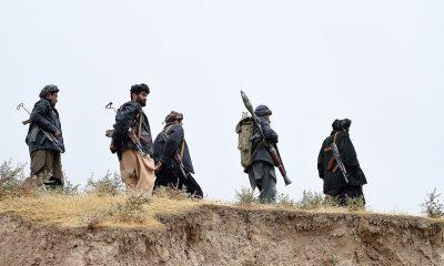 """Ополченцы в Панджшере заявили, что ликвидировали около 600 боевиков """"Талибана"""" - Фото"""
